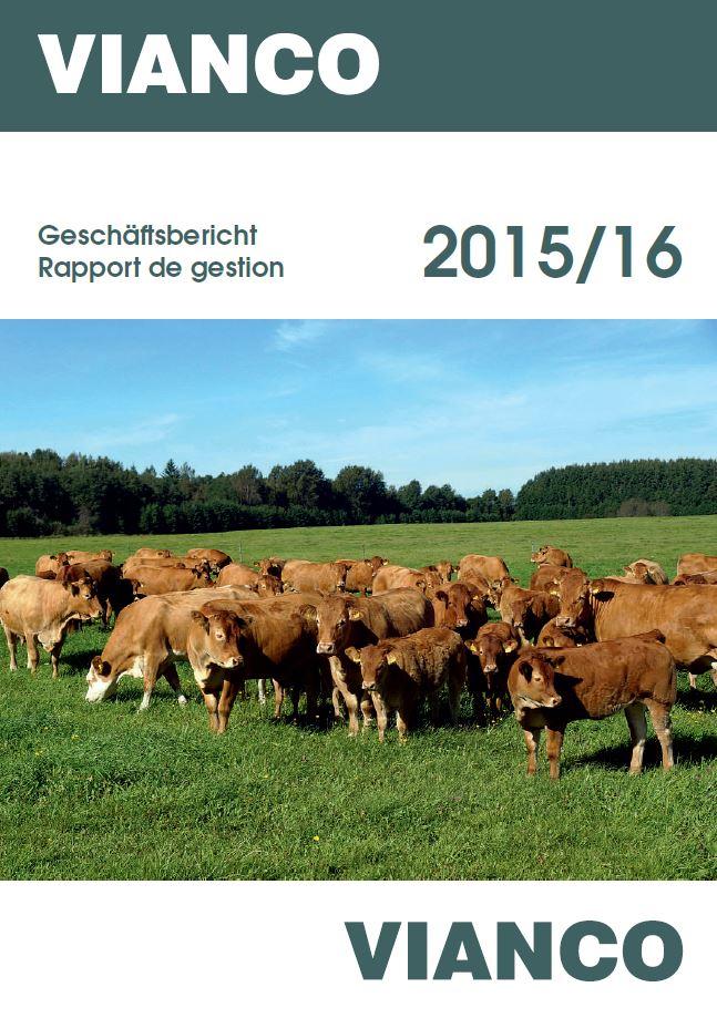 Titelbild Geschäftsbericht2015(4)